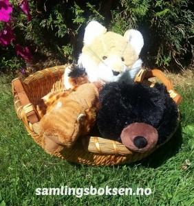 samlingsboksen_brakar_mikkel_laffen