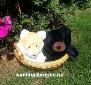 samlingsboksen_mikkel_brakar