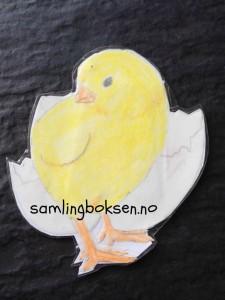 samlingsboksen_påske_kylling